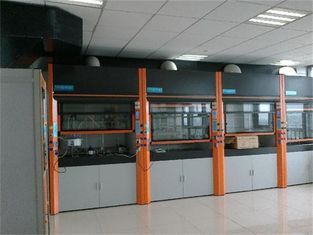 China The latest style laboratory fume hood production for chemical steel lab fume hood supplier